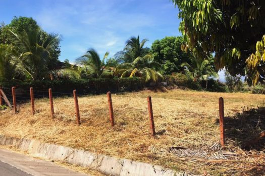 Lot for sale in Orotina